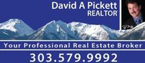 David A Pickett - Realtor